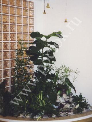Интерьер для мини сада